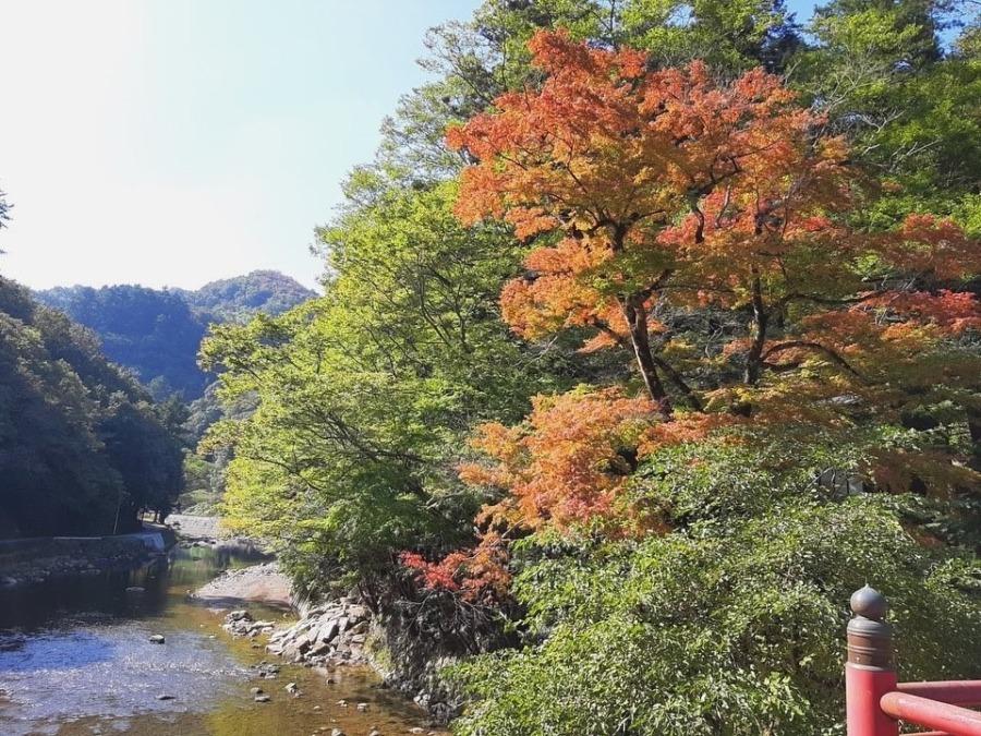 天神峡の紅葉