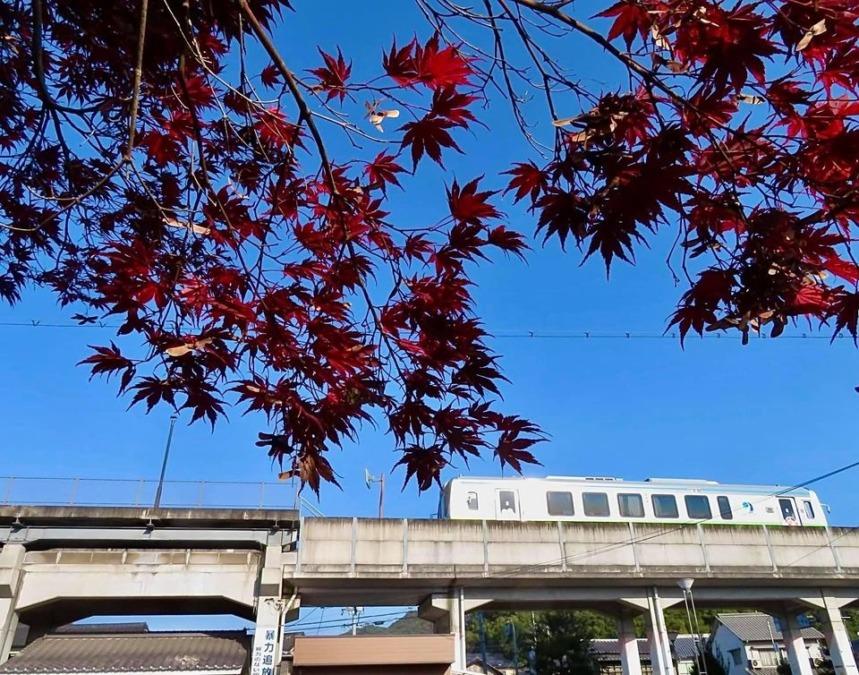 子守唄の里高屋駅周辺の紅葉