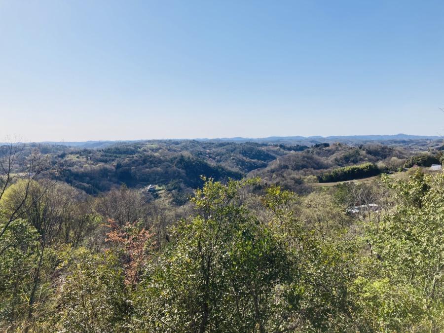 木野山キャンプ場の眺めが最高!